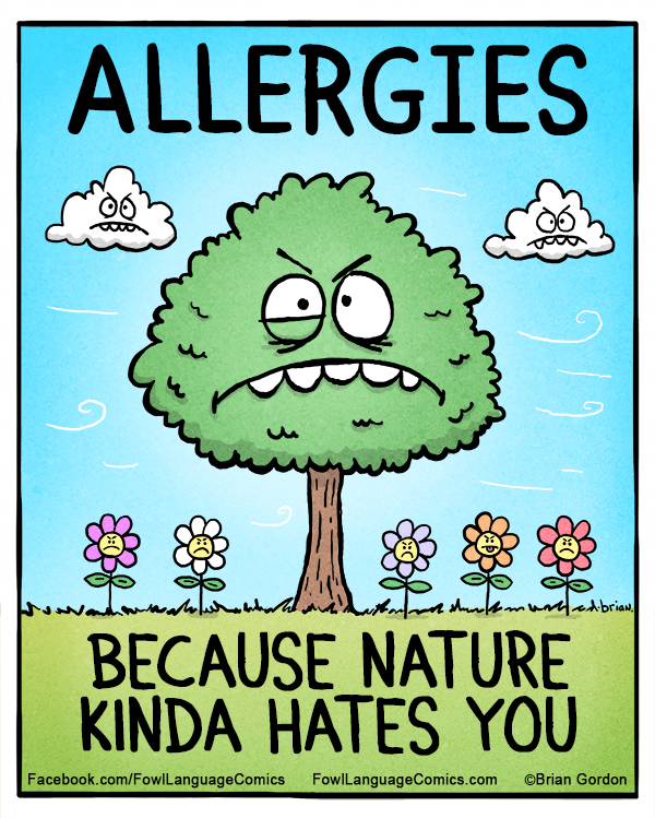 allergies power through the pollen how to fight spring allergies her campus